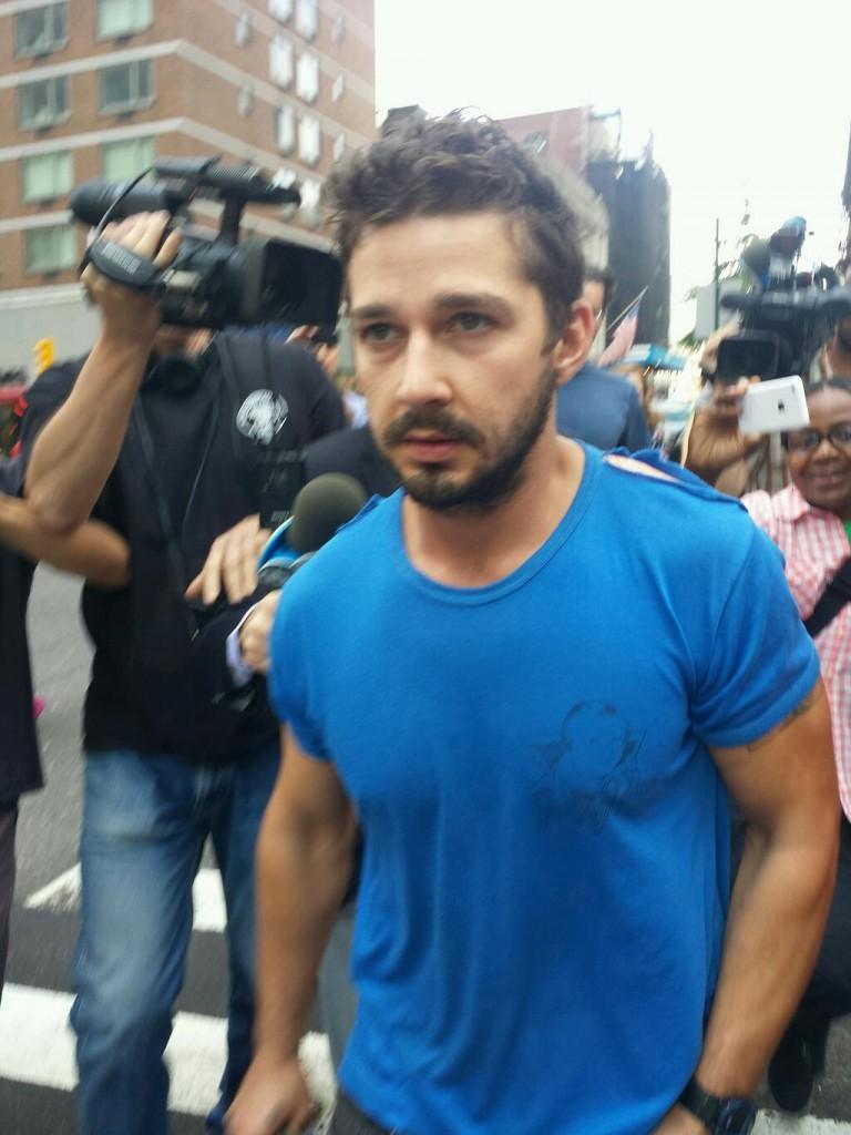 New York Gossip Gal   ... Shia Labeouf Arrested Today